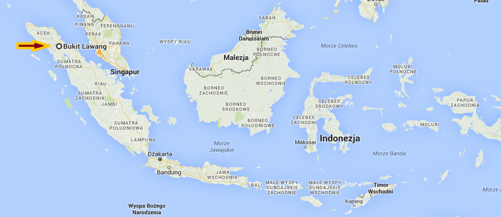 bukit lawang indonezja
