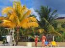 14 ciekawostek z Jamajki