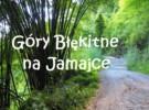 Góry Błękitne na Jamajce oraz o wypożyczeniu samochodu raz jeszcze